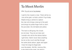 to meet merlin